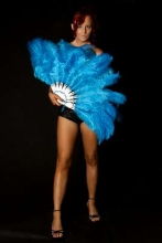 burlesque-feather-fans-australia-ffc00044