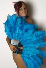 burlesque-feather-fans-australia-ffc00081