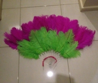 fantastique-feather-creations-pink-green-feather-fan