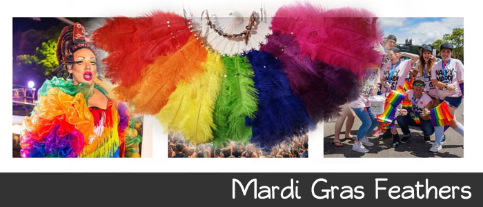 Mardi Gras Feather Fans, Headpieces and Feather Decorations